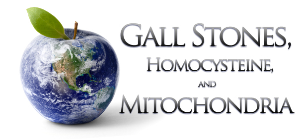 GALL STONES, HOMOCYSTEINE, AND MITOCHONDRIA