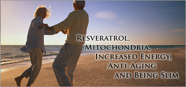 Resveratrol, Mitochondria, Increased Energy, Anti Aging and Being Slim